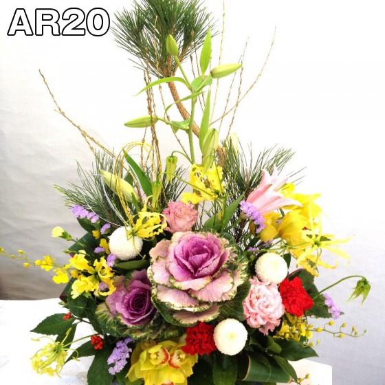 AR20.fw
