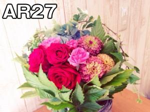 AR27.fw