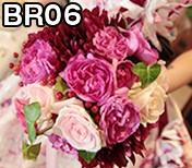 BR06.fw