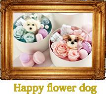 happyflowerdog.fw